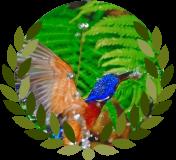 "Blued-eared Kingfisher"" by Panuru Angjan from FreeDigitalPhotos.net"