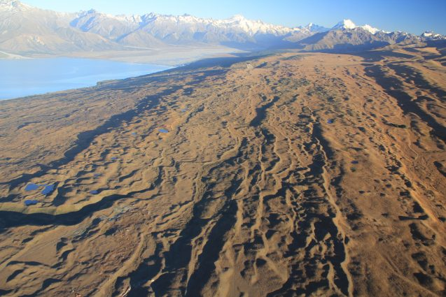 Formerly glaciated ground near Lake Pukaki, New Zealand, seen from a helicopter. The wavy ridges are moraines—mounds of rocky debris piled up at the edges of the ice at various times—during the last ice age. (Aaron Putnam)