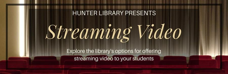 Link to Streaming Video Resources