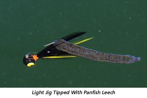 Light Jig Tipped With Panfish Leech