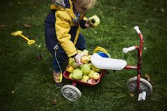 A child stands outside next to a tricycle with a basket of apples attached.