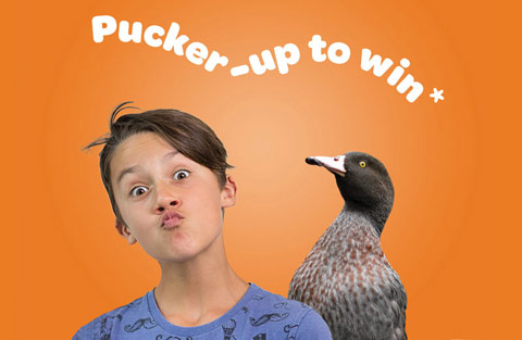Pucker-up to win | Boy with whio