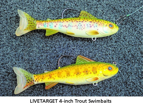 LIVETARGET 4-inch Trout Swimbaits