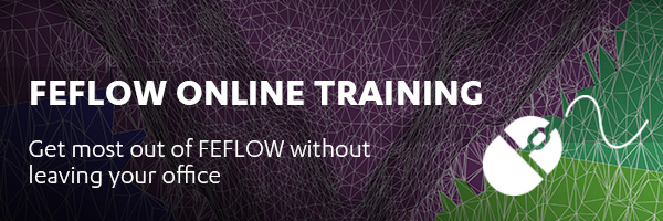 FEFLOW Online Training