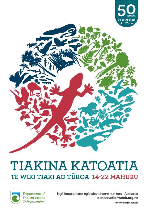 Gecko Poster in Te Reo Maori