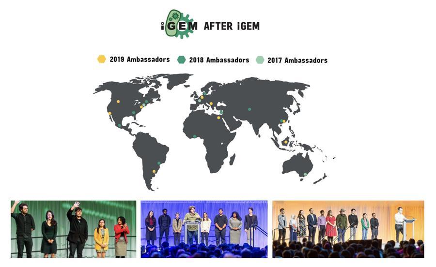 After iGEM Ambassador Program