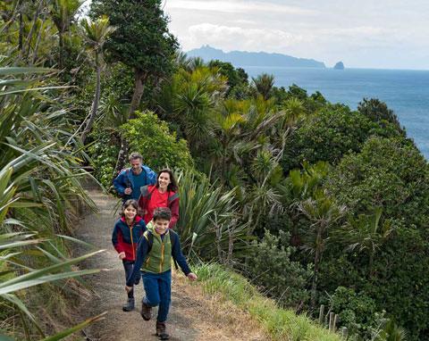 Mangawhai Cliffs Walkway.