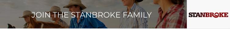 RFTTE Stanbroke Jobs Ad