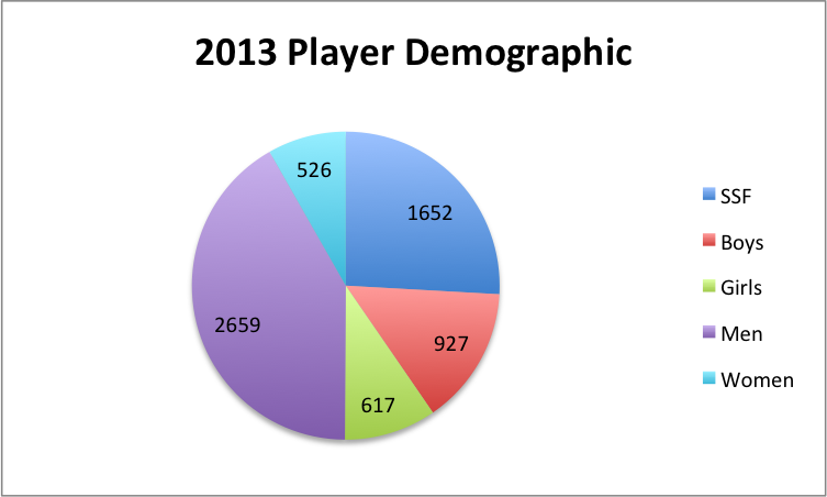 2013 Player demographic