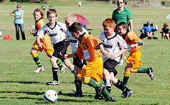 Kids playing soccer at the Palm Drive sporting fields