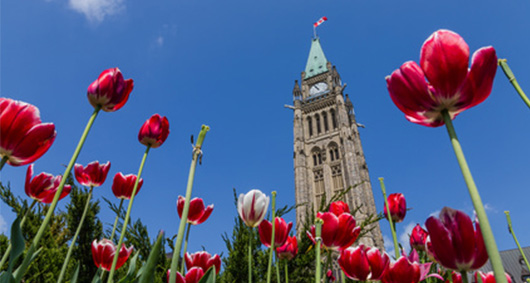 For our new Liberal government, here are 5 business issues they can't ignore