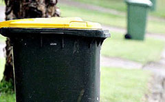 A photo of wheelie bins on footpaths, ready for bin collection day.