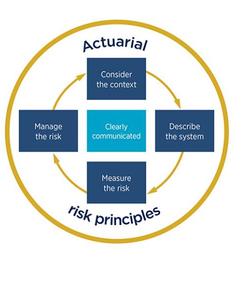 Cycle of Risk Principles Steps
