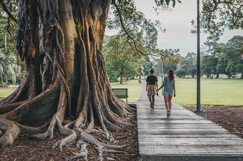 2 people walking by a large tree