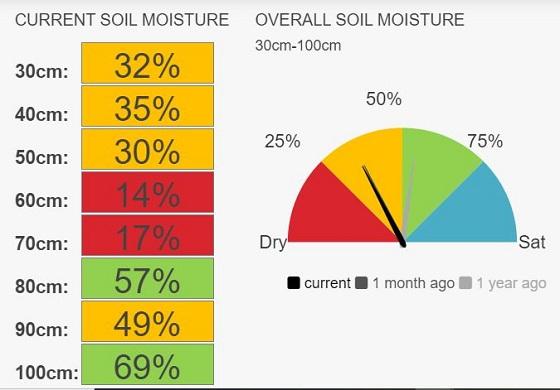 Birchip speedos moisture currently 32%