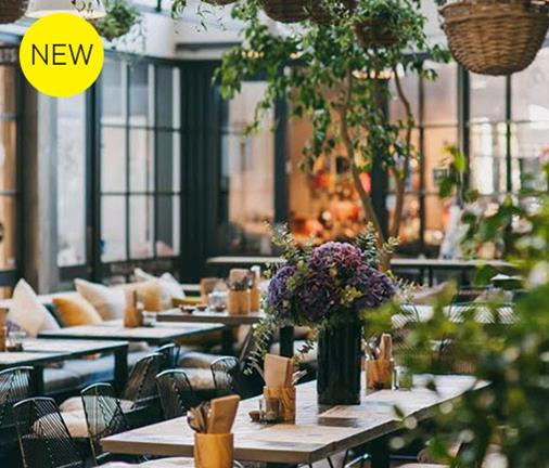 Meet the new bird on the block - Ponsonby Central welcomes a new eatery