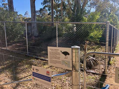 Southern Cassowary enclosure at On The Perch, Tathra.