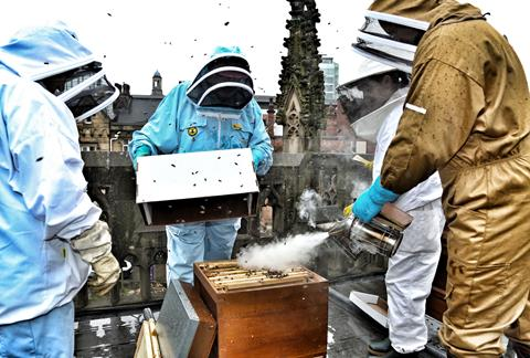 Beekeepers tending to the bees on the roof of Manchester Cathedral