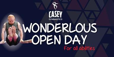 Wonderlous open day for all abilities