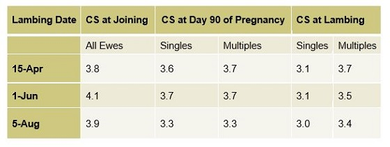 Table 1. Optimum condition score (CS) for composite or crossbred ewes at joining, day 90 and lambing for each lambing date, if the flock is scanned for multiples, on a typical farm at Hamilton