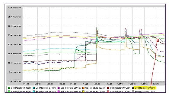 Tungamah soil moisture graph of canola use  is the same as the Ag Vic site at Youanmite.