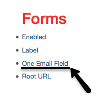 Email Verification Toggle Screenshot