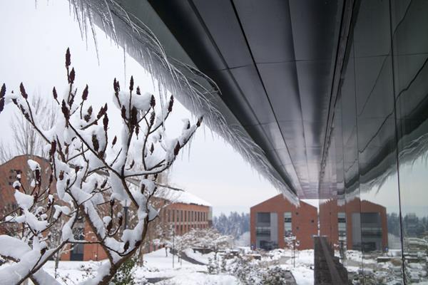 Building with icicles