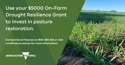 Resilience grant