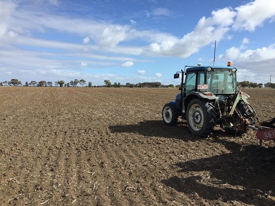 Tractor sowing PBC March 2020