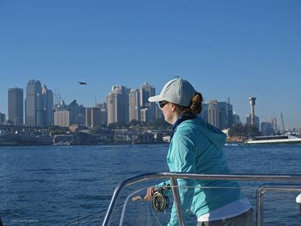 Hookup in Sydney Harbour