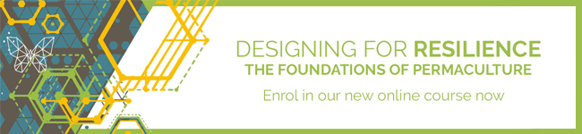 Designing for resilience: the foundations of permaculture. Enrol in our new online course now