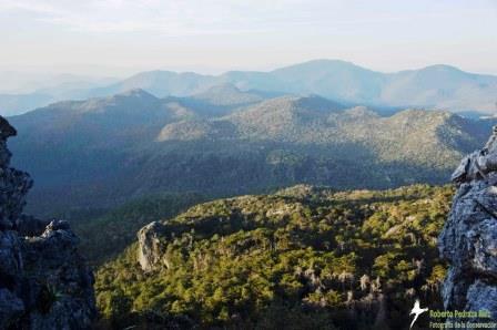 Cerro Prieto Reserve. © Roberto Pedraza Ruiz.