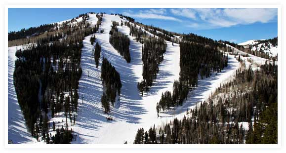 Deer Valley News