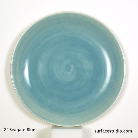 Seagate Blue Plate