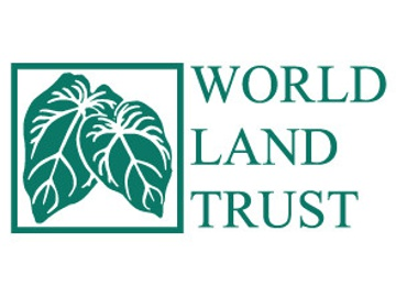 WLT logo. © WLT.