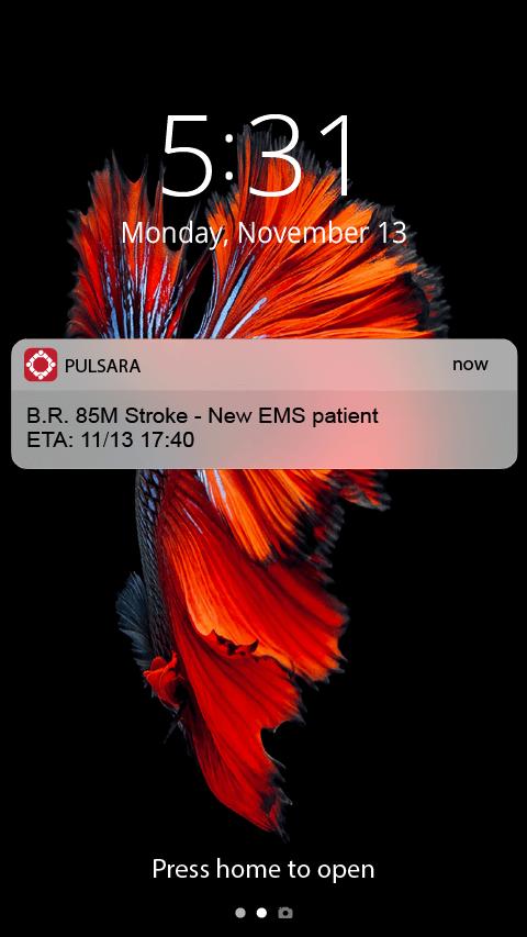Alert 1 with patient details