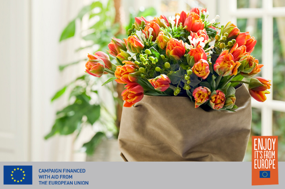 Tulips in a bag