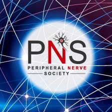PNS 2020 meeting
