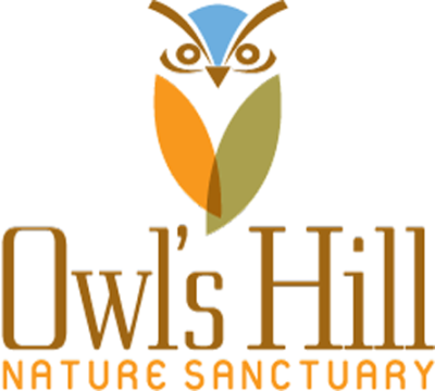 Owl's Hill