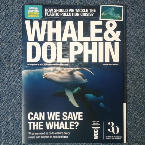 Whale & Dolphin magazine