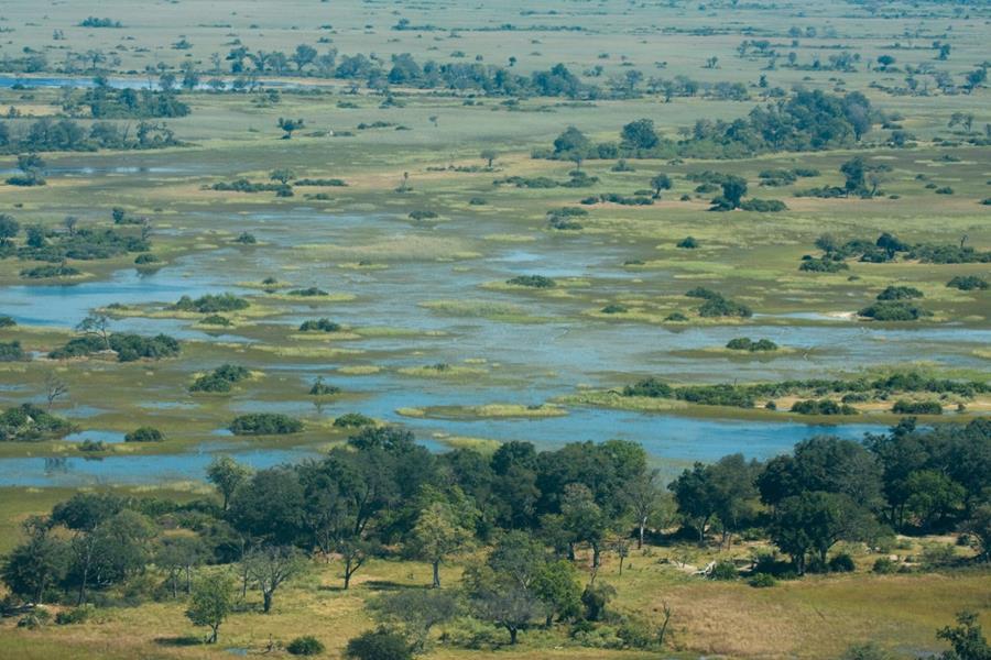 Nieuwsbrief Out in Africa - Into the Okavango; Okavango Delta, Botswana