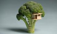 Broccoli Treehouse