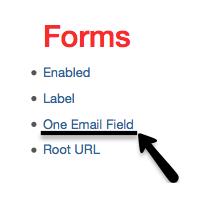 Email Verification Toggle Screenshot