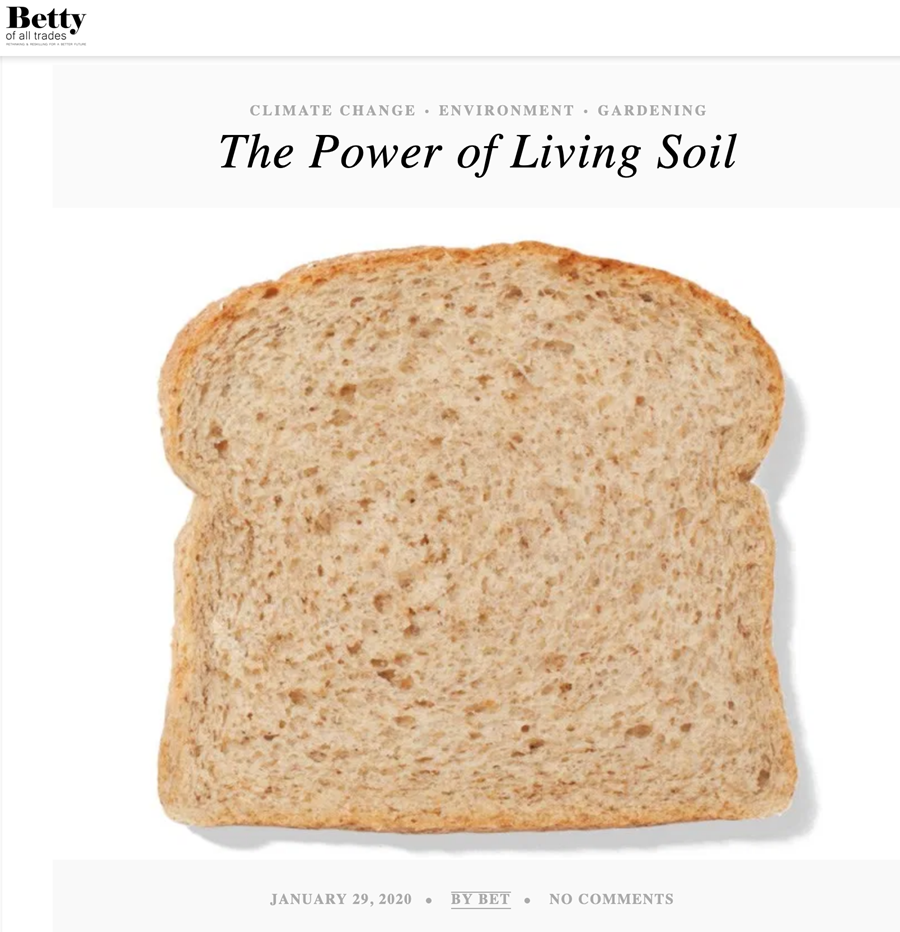 Image of article: The Power of Living Soil: picture of a slice of bread. Read the article and you'll know why.