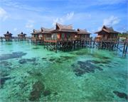 فيكوري على البحر ماليزيا