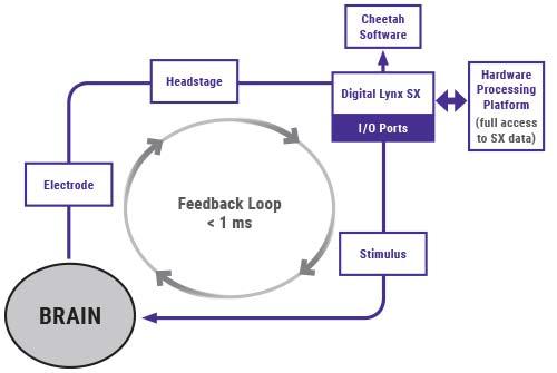 HPP Diagram