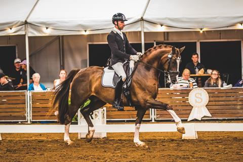The Winner of PSI Dressage & Jumping with the Stars 2019 6 YO Young Dressage Horse was Bertone (Benicio x Fidermaek Degazzoni) & Jayden Brown 📷 Geoff McLean