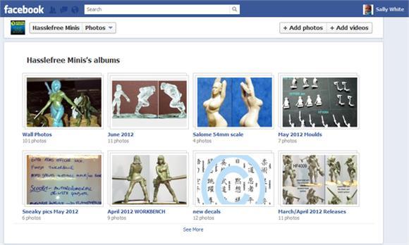 Screenshot of Facebook album pics