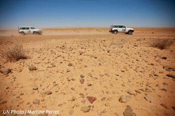 Tensions affecting UN mission in Western Sahara
