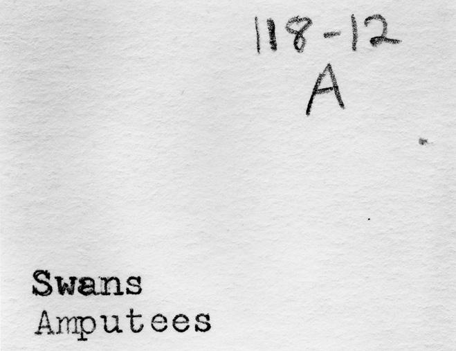 118-12 A